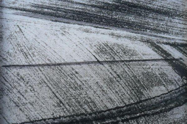 windstreif-1981-20120116-12110721516E8F1798-3AAE-1E40-B04C-B3BE551F8843.jpg
